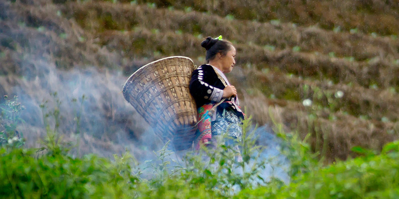 Woman from Hmong tribe in countryside near Chiang Mai