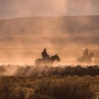 Gauchos herding sheep on dusty ranch