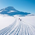 Family cross country skiing on a trail in Norway