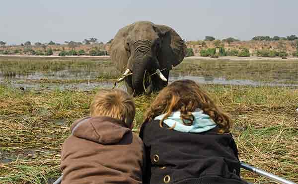 Young girl and boy watching an elephant in swamp in Africa