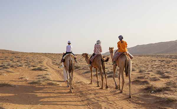 3 children on camels trekking through desert