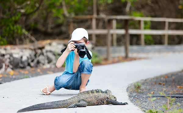 Boy taking photograph of iguana in the Galapagos Islands